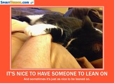 """To quote Bill Withers, """"We all need somebody to lean on."""""""