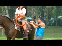 FUNNY VIDEOS  WORST KICKING HORSE ANIMALS FAIL 2016// / Best Funny Fail Compilation  Positive Life Magazine