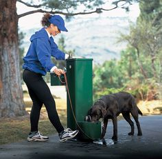 Great for dog parks the pet fountain is foot operated and incorporates a modified waste strainer to puddle water in order to facilitate drinking by pets.