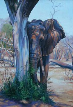 Elephant and Tree-Oil Painting by Alison Ingram Wildlife Artist