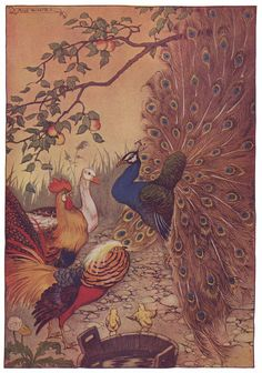 The Peacock - Aesop's Fables for Children, 1919