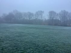 The Ice on the green at 7.30 am (-2 degrees) 28/12