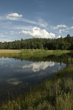 In the Jemez Mountains, New Mexico. I've been past this lake before, you should see it at night with a billion stars reflected in it...