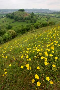 Downham Hill, Gloucestershire, England