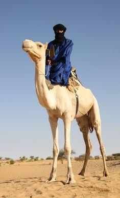 Africa | Tuareg man on his camel.  Diré, Tombouctou, Mali | ©Raphael Bick