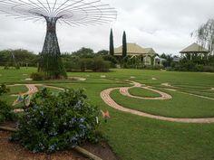 picture taken at Antique Rose Emporium, near Brenham, TX.