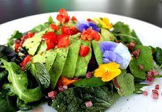 Dill Bacon Salad | Health News!