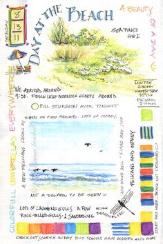 South Carolina LowCountry Nature Journaling and Art: A Day at the Beach and Whitelines Paper