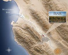 Blair Wines Carmel-by-the-Sea Tasting Room Pinot Noir, arroyo seco pinot noir Monterey County, Monterey Bay, Carmel By The Sea, Tasting Room, Big Sur, Wines, Vineyard, Vine Yard, Big Sur California