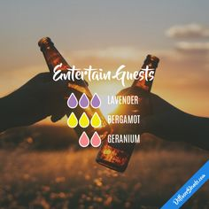 Entertain Guests - Essential Oil Diffuser Blend