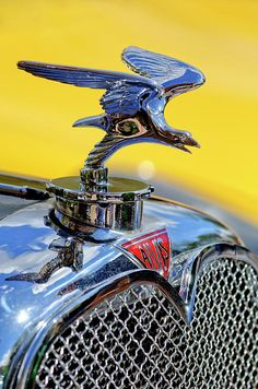 Browse through images in Jill Reger's Hood Ornaments and Emblems collection. Car hood ornaments and emblems Logo Autos, Vintage Cars, Antique Cars, Vintage Signs, Car Bonnet, Automobile, Car Hood Ornaments, Car Badges, Car Logos