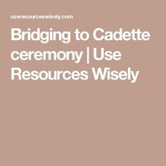 Bridging to Cadette ceremony | Use Resources Wisely