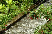 Bucaramanga Santander Colombia  - El Parque del Agua un espacio que invita al encuentro de sus visitantes con el agua en un espacio natural.  El agua como elemento vital para la humanidad es resaltado en el parque como un aporte del Acueducto Metropolitano de Bucaramanga.