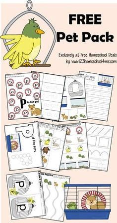 SUPER cute pet themed worksheets for Toddler, Preschool and Kindergarten ate kids!