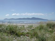 Kapiti Island Nature Reserve – Waiorua Bay, New Zealand - Atlas Obscura The Places Youll Go, Places To See, History Online, The Beautiful Country, Unique Animals, Nature Reserve, British Isles, Travel Photography