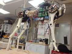 MIT Biomimetic Robotics Lab | Biomimetic Robotics Lab of Prof. Sangbae Kim, Massachusetts Institute of Technology