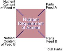 Balancing rations using Pearson's Square Ag Science, Animal Science, Plant Science, Science Curriculum, Teachers Corner, New Teachers, Student Teaching, Teaching Tools, Livestock Judging