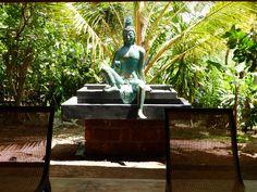 Sri Lanka.  The Emerald Pearl Tour, www.coolcalmandcollected.com.au