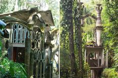 Las pozas. Surrealist garden in Mexico