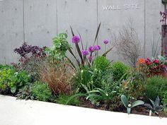 アリウム シューベルティ : [ ACID NATURE 乙庭 ] Dry Garden, Garden Beds, Back Gardens, Outdoor Gardens, Landscape Design, Garden Design, Narrow Garden, Tropical Landscaping, Garden Borders