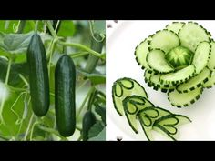 Học cắt tỉa đơn giản từ cà rốt và dưa chuột - YouTube Veggie Art, Fruit And Vegetable Carving, Fruit Decorations, Food Decoration, Chocolate Fountain Wedding, Cucumber Flower, Amazing Food Art, Fruit Creations, Pumpkin Mousse