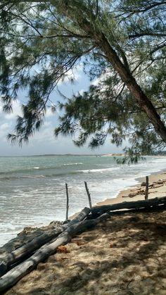 Praia de Pititinga RN