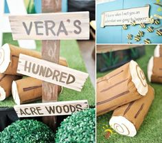 Vera's Winnie the Pooh Themed Party – Stage Details