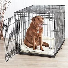 Indoor Folding Cage Crate Kennel Large Pet Dog Single-Door Metal Portable 42x28