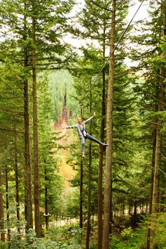Would you dare ride the zip wire at GoApe?!