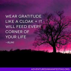 Wear gratitude like  cloak...