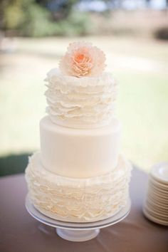 Ruffled vintage cake!  Love!  Would be really cute with ruffles on the middle tier!