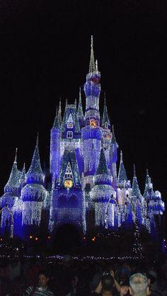 Disney World in Florida Magic Kingdom Orlando Vacation, Florida Vacation, Florida Travel, Vacation Spots, Visit Florida, Orlando Florida, Florida Girl, Florida Living, State Of Florida