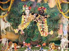 Krishna-Balaram in Vrindavan @ Krsna-Balaram Mandir