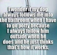 Dogs and following us to the potty...