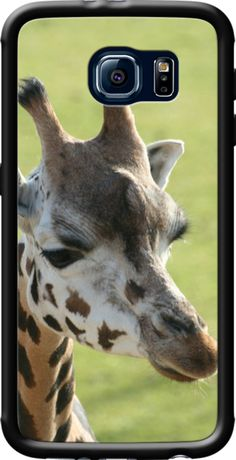 Adorable giraffe 003 By JAMFoto for Galaxy S6