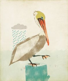 Brown Pelican Limited Edition Print by ShopAmySullivan on Etsy, $20.00  Cross stitch project??