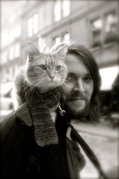 ArtHouse: Bob the Cat and Mr James Bowen by seb098