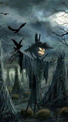 Halloween Costume Props, Halloween Eve, Halloween Scarecrow, Halloween Artwork, Halloween Pictures, Fall Pictures, Halloween Horror, Vintage Halloween, Halloween Wallpaper Iphone