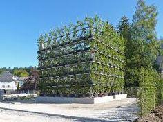 Bilderesultat for sustainable architecture