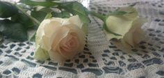 rose Rose, Flowers, Pink, Roses, Royal Icing Flowers, Floral, Florals, Flower, Bloemen