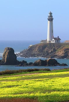 Pigeon Point Lighthouse, CA  Great place to hike. Beautiful scenery and near San Francisco