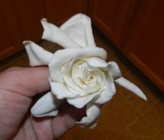 Gardenias - Making Scented Oil Products