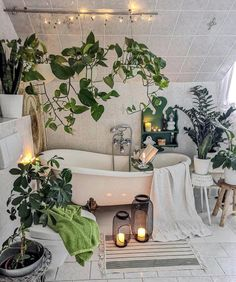 bathroom decoration 33 The Best Jungle Bathroom Decor Ideas To Get a Natural Impression - Whether creating a themed bathroom for the kids or you if young at heart and fun loving then you cant go wrong with cute monkeys and all their safari. Jungle Bathroom, Bathroom Trends, Bathroom Ideas, Bathroom Goals, Plants In Bathroom, Nature Bathroom, Bling Bathroom, Bathroom Vintage, Bathroom Inspiration