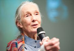 Jane Goodall: Primatologist who showed the world that a female scientist could work alone in the wilderness.