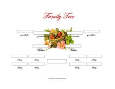 3 Generation Family Tree with Siblings Template