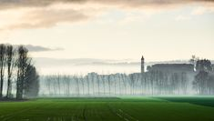 Morning Mist Floating Over the Ground | #desktop #wallpapers #photography #nature #photos #clouds #field #fog #morning #sky #sunrise #trees