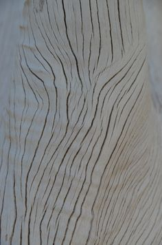 Art De Vivre by Francine Gardner  Sun bleached wood