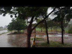 Rainy day in Pakistan Pakistan, The Creator, World, Videos, Link, Day, Youtube, Plants, Garden