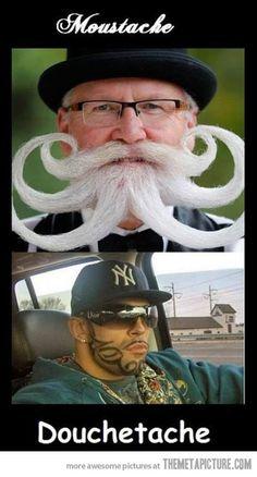 Types of moustache…