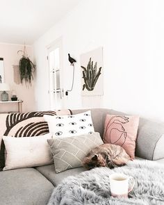 106 vind-ik-leuks, 6 reacties - >> Kirsten << (@kirslivia) op Instagram: 'On the couch with.. this lazy cat, tea and the eurovision songcontest '